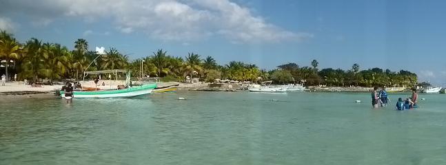 Playas que pueden visitar -  Akumal snorkel para ver tortugas a poca distancia