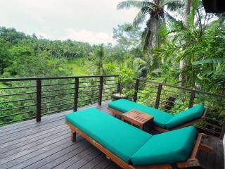 Relaxing three bedroom private villa in Ubud Bali