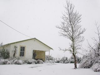 Ohakune Ski House & Summer Bach