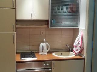 City center apartment Belgrade