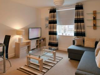 flat ideal for couples/families/professional, Cardiff