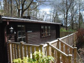 Skelwith Bridge, Ambleside,Self Catering,Log Cabin