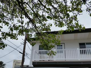 Beautiful One Bedroom Condo 1 block to the Beach, Wildwood