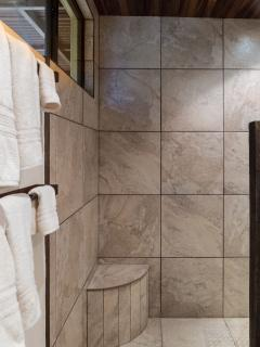 Downstairs bathroom walk in shower