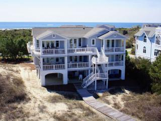 Gray Goose ~ RA72885, Holden Beach
