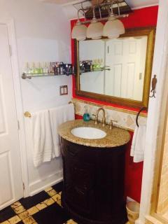 Basement level bathroom (next to purple queen bedroom)