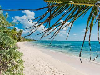 Coco Beach Villas #1