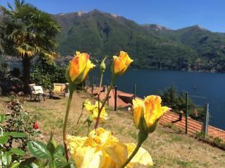 Lake Como Nice house in Carate Urio, amazing view