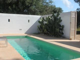 Private modern villa with pool ideally located.