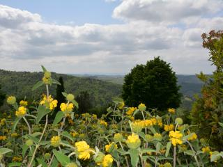 Magnificient views in the heart of Chianti
