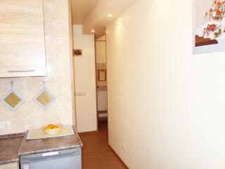 Apartment (квартира) Bassejnaja (Бассейная), 75