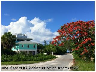 New! Domino Dreams   Elevated Island Life!, Green Turtle Cay