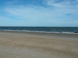 Dolphins, Sea Breezes, Miles of Warm Sand, Hilton Head