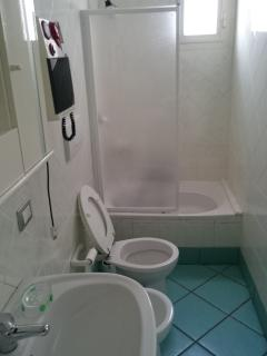 Large bathroom with tub/shower
