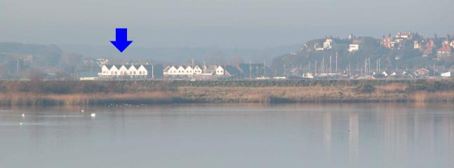 View of apartments from across the marsh