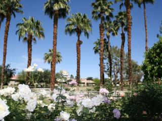 Gorgeous Upscale 2bd Prime Rancho Mirage Locatio