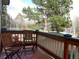 Cozy Mountain Cabin on 5 Beautiful, Wooded Acres