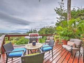 'Villa Van Dyke' Breathtaking 2BR St. Thomas House w/Wifi, Private Sun Deck