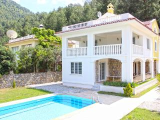 Luxury villa for large family holidays in Uzumlu, Yesiluzumlu