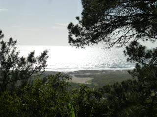 Beach, nature, sea and wild, Costa da Caparica