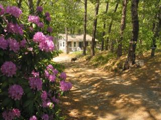 75 Cassick Valley Road 131364, Wellfleet