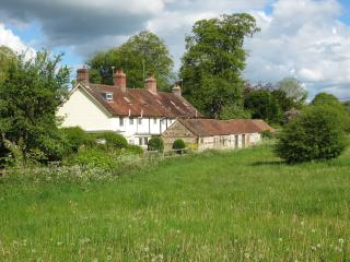 Rambler's Cottage, Heart of Dorset, Blandford Forum
