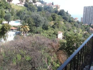 Lovely 2 bedroom flat overlooking Monaco