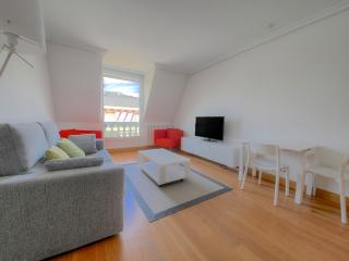 Renovated in July 2015+PARKING (optional)+WIFI, San Sebastian - Donostia