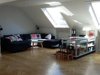 Beautiful bright apartment close to Forum metro, Copenhagen