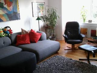 Large Copenhagen apartment near Grundtvig Church, Copenhague