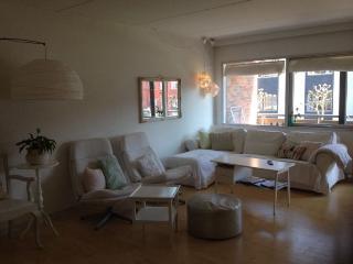 Child friendly Copenhagen apartment near Faelled Park
