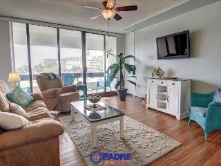 Remodeled 2 bedroom Condo at the entrance to the New Schlitterbahn Water Park, Corpus Christi
