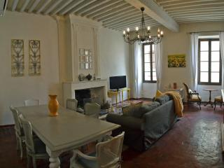 MAISON FANNY-18th century village home in the heart of Provence