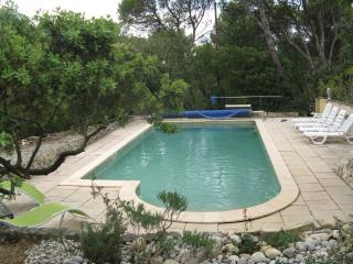 Vacation house for rent in Provence with pool, Uchaux