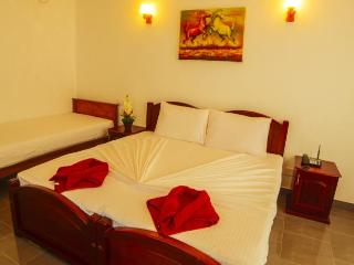 Shanketha Palace on the beach AC room sleeps 1-3