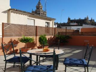 Duplex ap. free wifi and terrace Giralda´s view, Provinz Sevilla