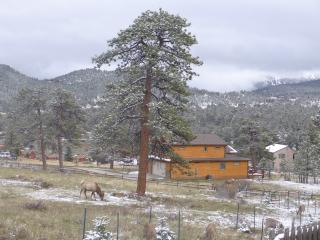 Modern Mountain Home with Majestic Views - vacation home registration #3331