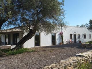 Fam friendly 4 bed renovated Quinta with kids pool, Santo Estevao