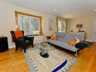 BRAND NEW 3BR Condo w/Gas Fireplace, Wifi. Close to skiing!