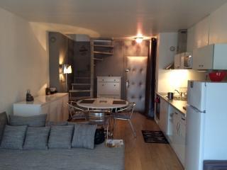 Magnifique Duplex tout confort, Gaillard
