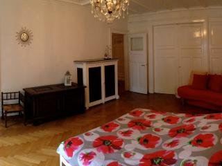 Charming apart near City Center & European Instit., Straßburg