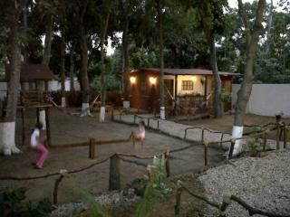 Valentina Cabin, Playa El Agua, Margarita Island., Playa el Agua