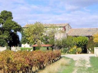 Domaine Savary, Languedoc Gite to rent on working vineyard (sleeps 5-6) (Ref: 55), Mèze