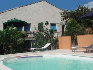 Laurens South France holidays rental pool 6 beds