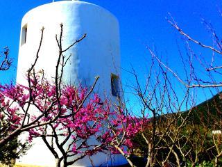Windmill Complex - Windmill Villa