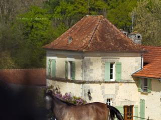 Les 2 Abbesses en Vert | La Grande Maison Rental, Brantome