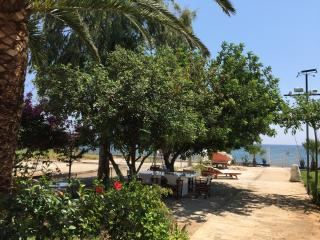 Beachfront Maria's Cottage, Nea Makri