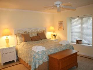 Wonderful Villa in South Beach of Sea Pines. Walk to the Salty Dog and Beach!