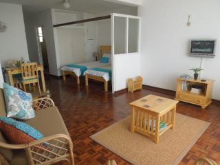 Sunny Studio across from the beach, Durban