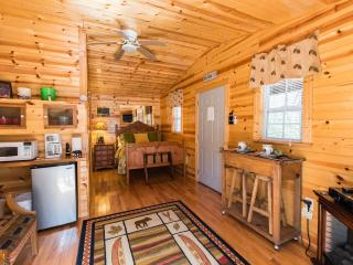 Quaint Cabin in National Park and Toccoa River, Blue Ridge